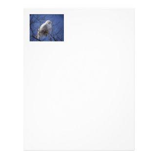 Snowy Owl - White Bird against a Sapphire Blue Sky Letterhead