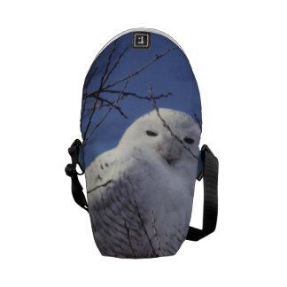 Snowy Owl - White Bird against a Sapphire Blue Sky Messenger Bag