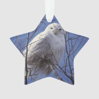 Snowy Owl, White Bird against a Sapphire Blue Sky Ornament