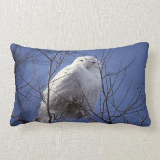 Snowy Owl - White Bird against a Sapphire Blue Sky Pillow