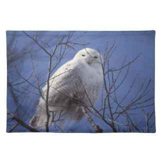 Snowy Owl - White Bird against a Sapphire Blue Sky Placemat