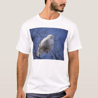 Snowy Owl - White Bird against a Sapphire Blue Sky T-Shirt