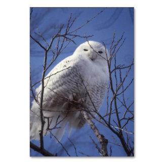 Snowy Owl, White Bird against a Sapphire Blue Sky Table Card
