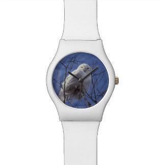 Snowy Owl, White Bird against a Sapphire Blue Sky Wristwatch