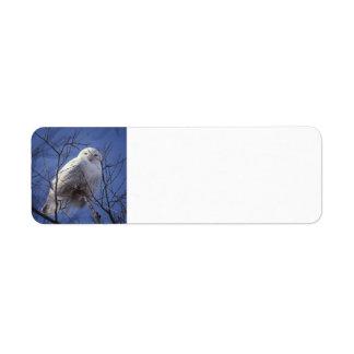 Snowy Owl - White Bird & Sapphire Blue Sky full Return Address Label