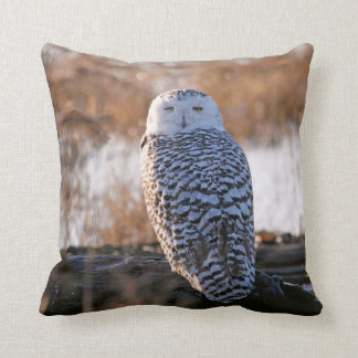 Snowy Owl Winking Pillow