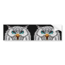 Snowy Owls Bumper Sticker