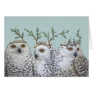 Snowy owls on aqua card