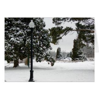 Snowy Park Meme Greeting Card