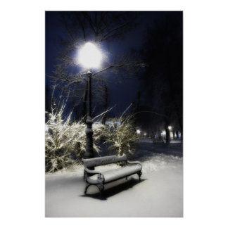 Snowy Park Posters