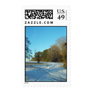 Snowy Path Blue Sky Stamps