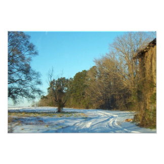 Snowy Path Photo Print