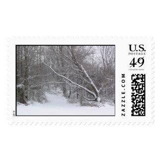 Snowy path postage