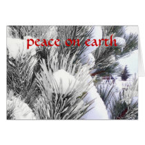 Snowy Peace Winter Blessings Horse Pony Christmas Card