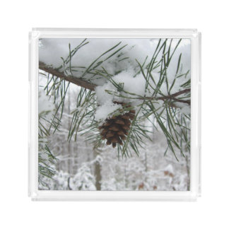 Snowy Pine Branch Winter Nature Photography Acrylic Tray