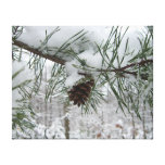 Snowy Pine Branch Winter Nature Photography Canvas Print
