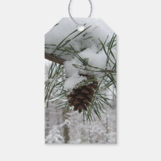 Snowy Pine Branch Winter Nature Photography Gift Tags