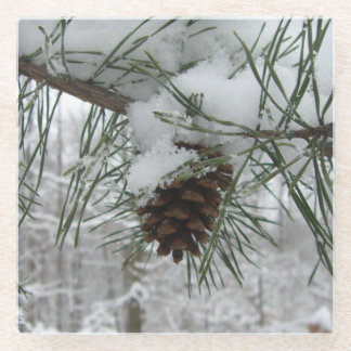 Snowy Pine Branch Winter Nature Photography Glass Coaster