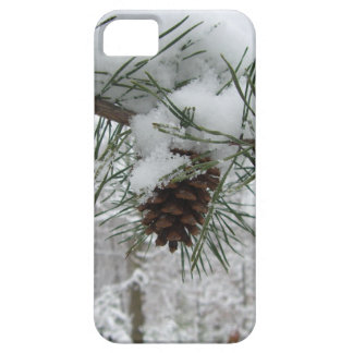 Snowy Pine Branch Winter Nature Photography iPhone SE/5/5s Case