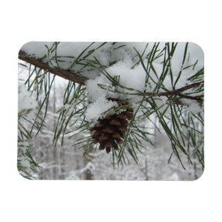 Snowy Pine Branch Winter Nature Photography Magnet