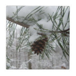 Snowy Pine Branch Winter Nature Photography Tile