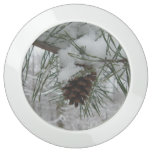 Snowy Pine Branch Winter Nature Photography USB Charging Station