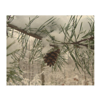 Snowy Pine Branch Winter Nature Photography Wood Wall Art