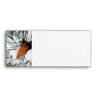 Snowy pine cone envelopes