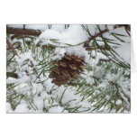 Snowy Pine Cone I Winter Nature Photography Card