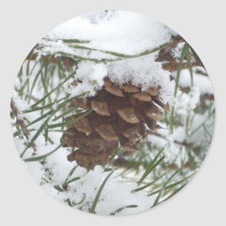 Snowy Pine Cone I Winter Nature Photography Classic Round Sticker