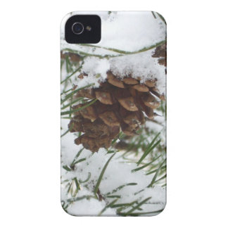 Snowy Pine Cone I Winter Nature Photography iPhone 4 Case-Mate Case