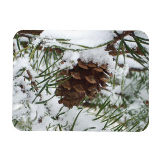 Snowy Pine Cone I Winter Nature Photography Magnet