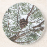 Snowy Pine Cone II Winter Nature Photography Drink Coaster
