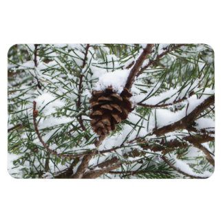 Snowy Pine Cone II Winter Nature Photography Magnet