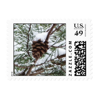 Snowy Pine Cone II Winter Nature Photography Stamp