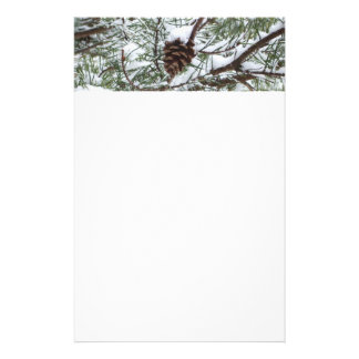 Snowy Pine Cone II Winter Nature Photography Stationery