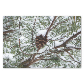 Snowy Pine Cone II Winter Nature Photography Tissue Paper