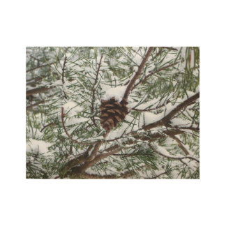 Snowy Pine Cone II Winter Nature Photography Wood Poster