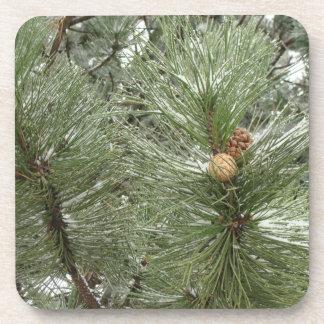 Snowy Pine Cones Cork Coaster