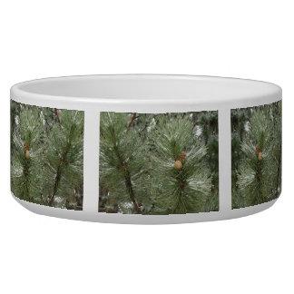 Snowy Pine Cones Pet Bowl