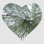 Snowy Pine Needles Green and White Winter Photo Heart Sticker