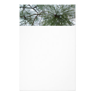 Snowy Pine Needles Green and White Winter Photo Stationery