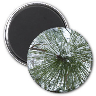Snowy Pine Needles Fridge Magnets
