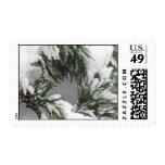 Snowy Pine Stamp