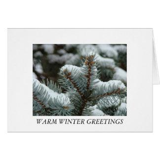 Snowy Pine, WARM WINTER GREETINGS Card