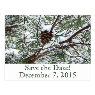 Snowy Pinecone Save the Date Postcard
