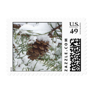 Snowy Pinecone Stamp