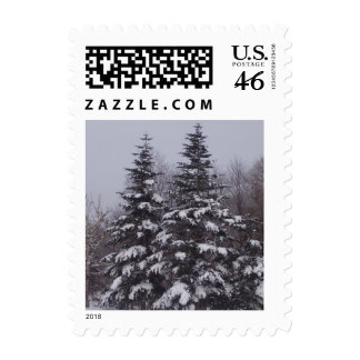 Snowy Pines Postage Stamp