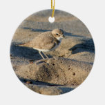 Snowy Plover Christmas Tree Ornaments