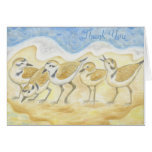Snowy Plover thank you notecard Stationery Note Card
